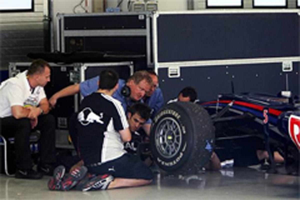 F1 フレキシブルウイング