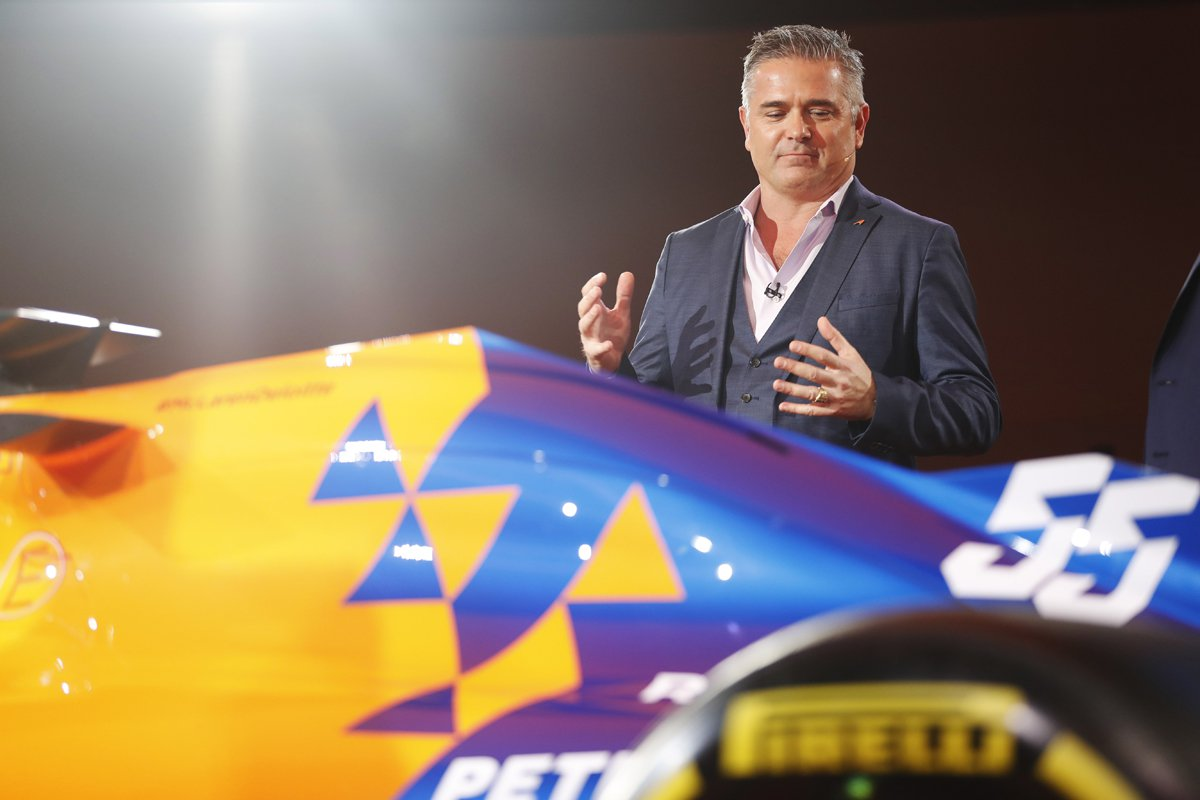 F1 マクラーレン ペトロブラス